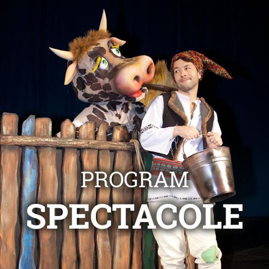 Program Teatru de Papusi Gulliver Galati